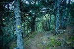 Andorra_08