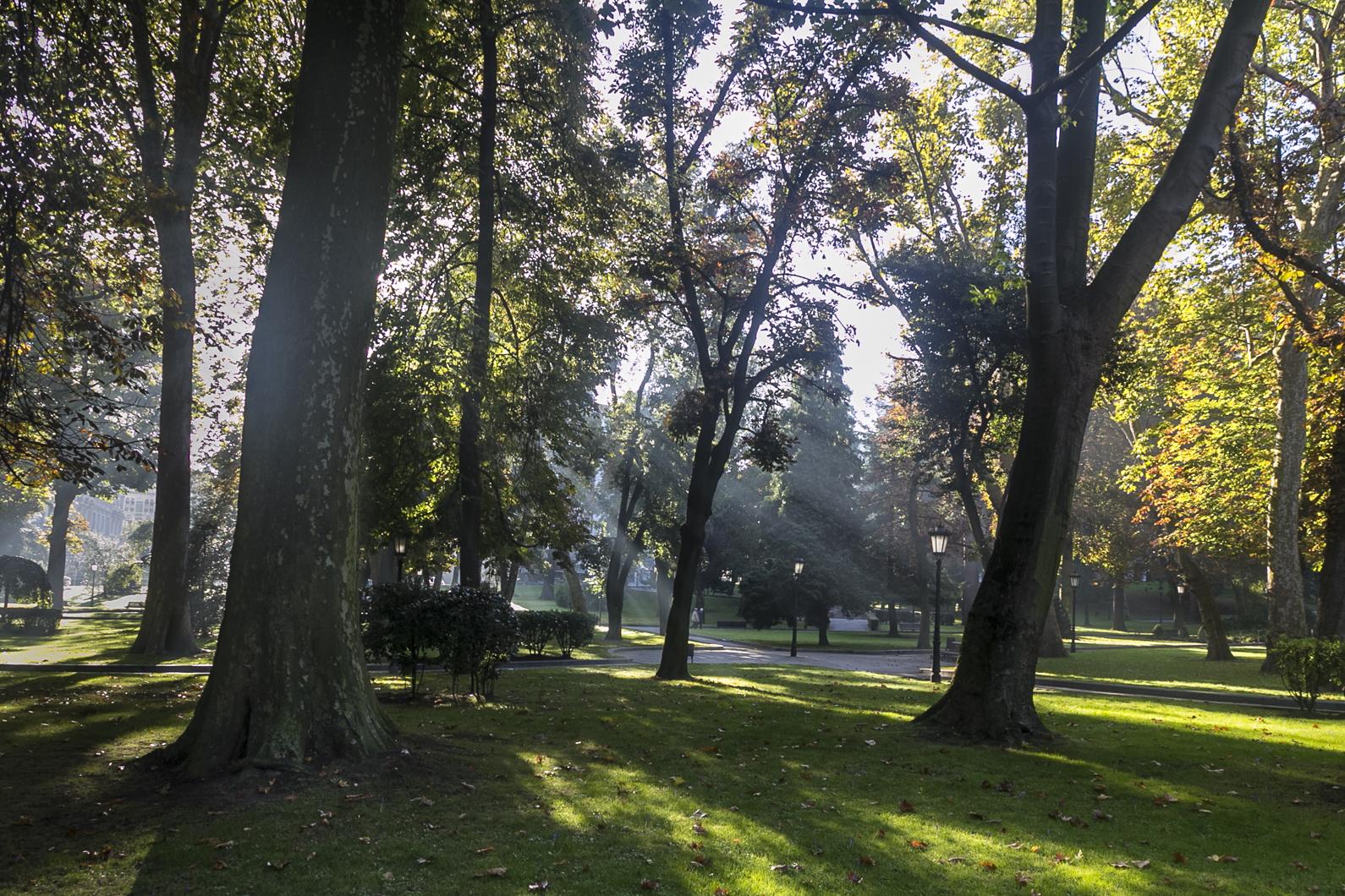 Oviedo16-067