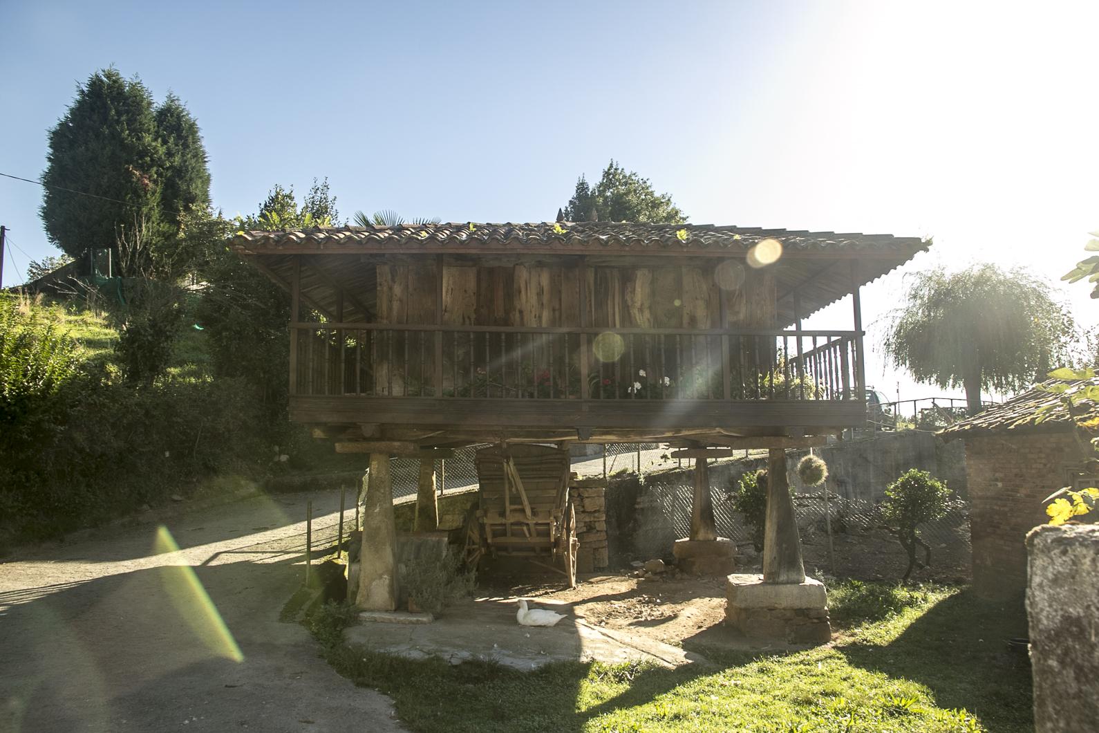 Oviedo16-097