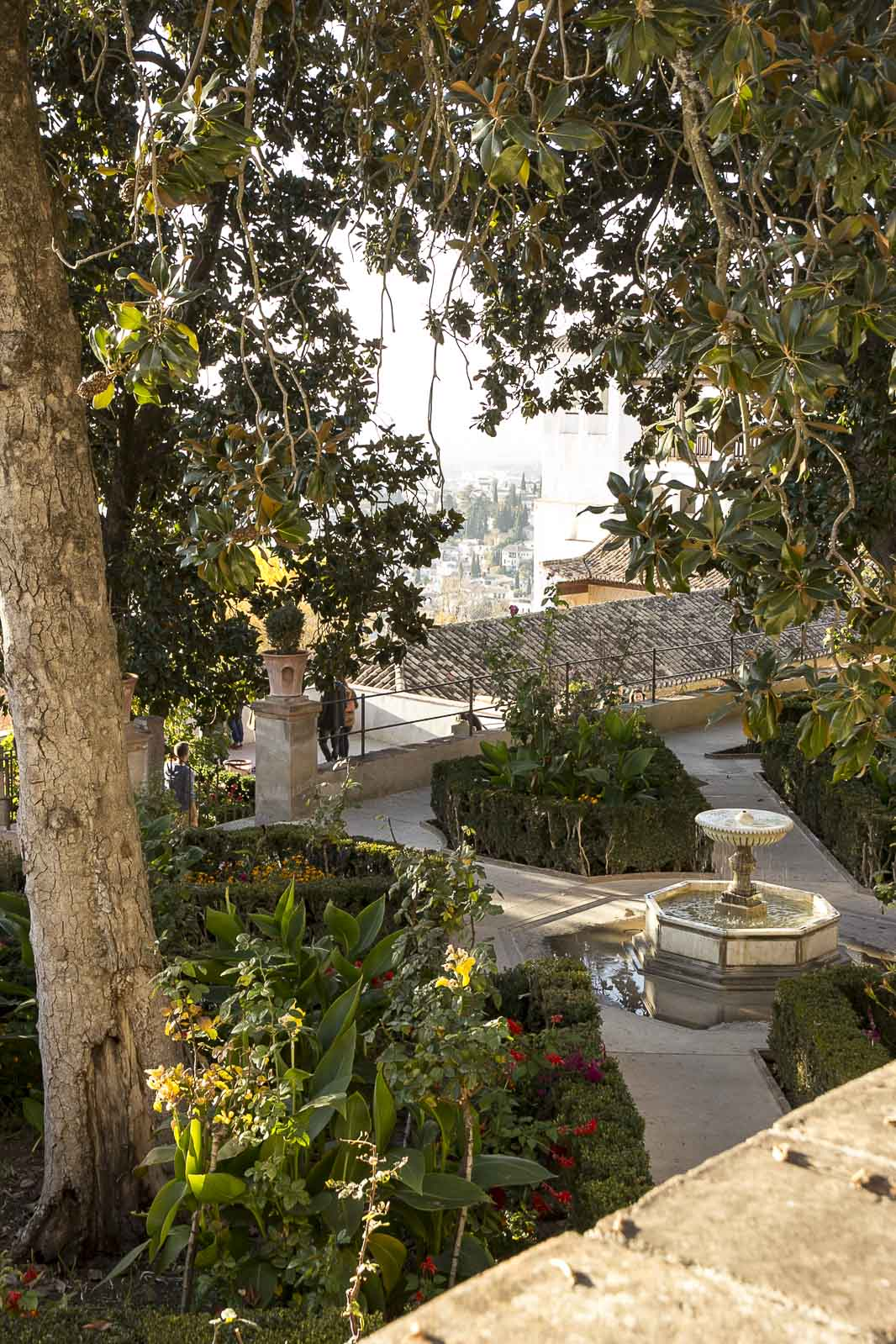 Granada toledo 2015_116