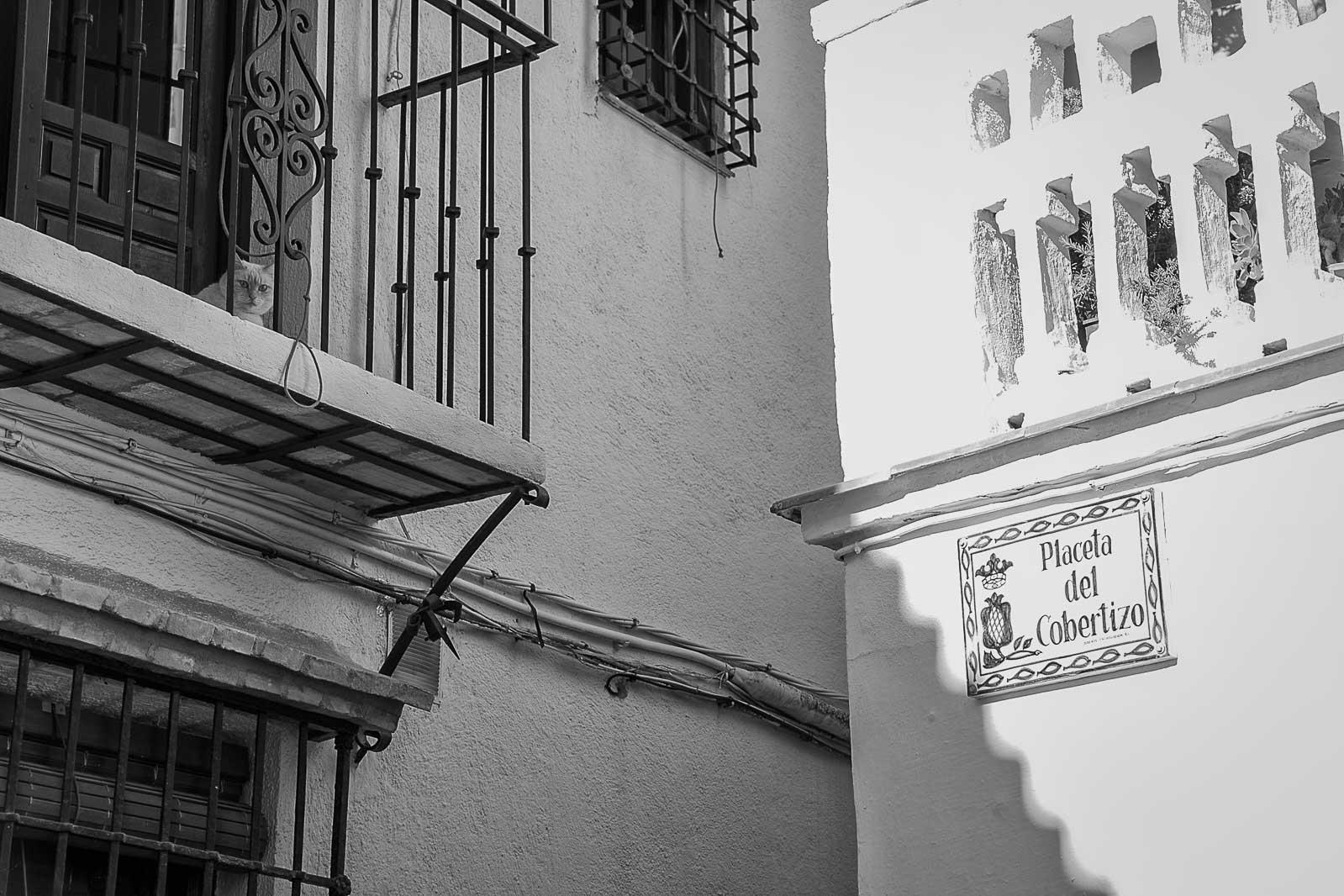 Granada toledo 2015_21