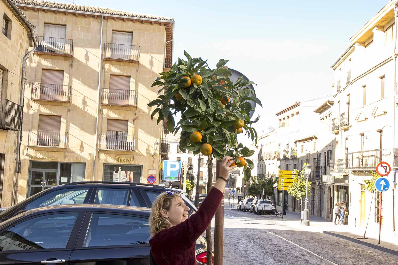 Granada toledo 2015_258