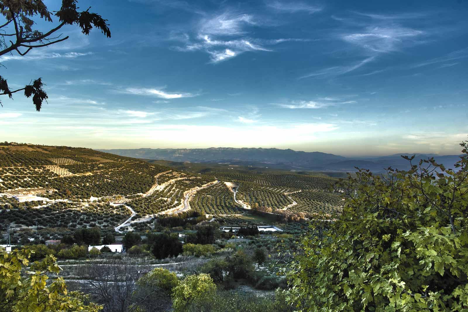 Granada toledo 2015_269