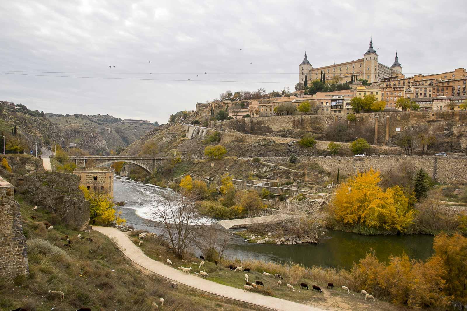 Granada toledo 2015_299