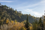 Granada toledo 2015_200