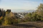Granada toledo 2015_97