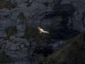 cascada gujuli_18.jpg