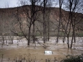 Logroño inundado-123