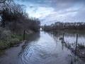 Logroño inundado-137