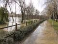 Logroño inundado-26