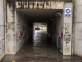 Logroño inundado-30