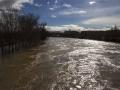 Logroño inundado-51
