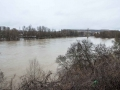 Logroño inundado-55